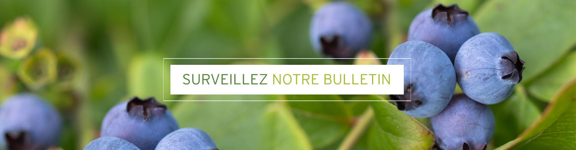 banniere-tablebio-bulletin